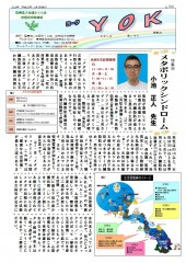 広報紙「YOK」第14号 特集14 メタボリックシンドローム